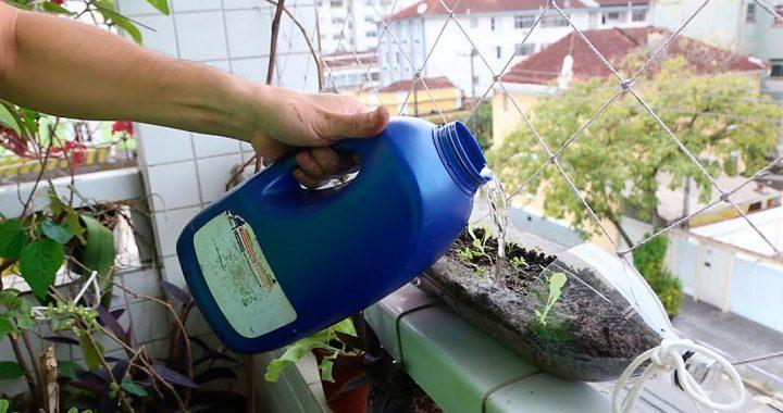 Cursos de composteiras e plantio de mudas em objetos recicláveis