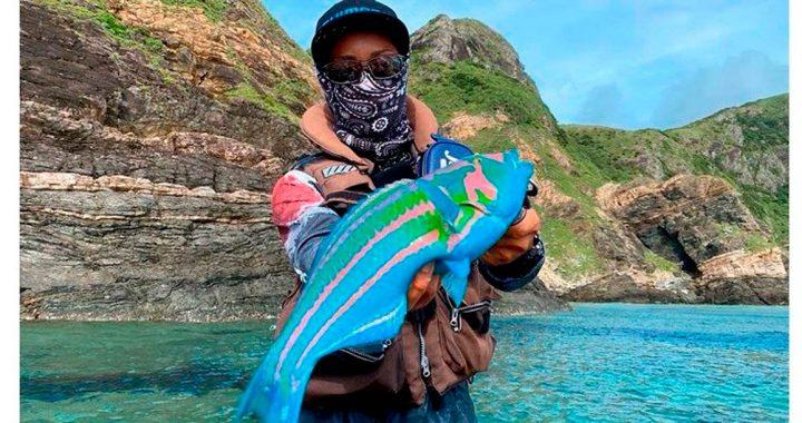 Loucura: Peixe 'Avatar' é pego no Japão