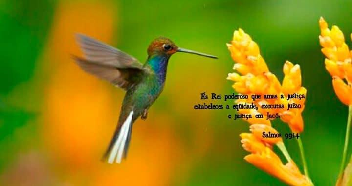 Espírito de Deus em Provérbios 2:9