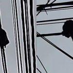 Saguis são flagrados em postes do Gonzaga